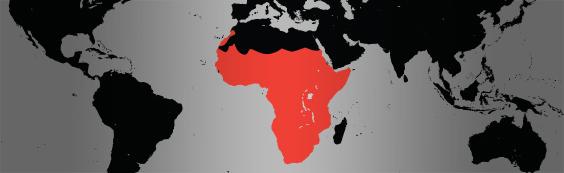 Guinea Fowl map
