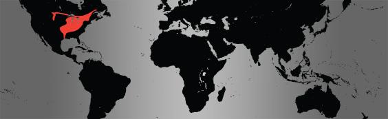 Mudpuppy map
