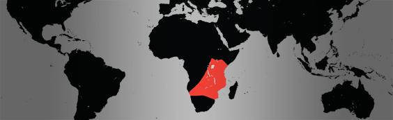 plains zebra map