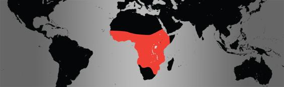 Saddle billed stork. map
