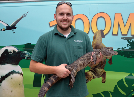 zoo keeper holding reptile