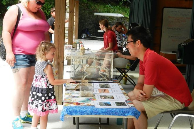 little girl interacting with tabling