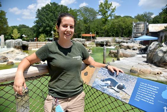 zoo keeper posing near penguin exhibit