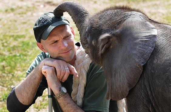 zoo keeper and elephant
