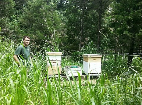 Man standing next to bee boxes