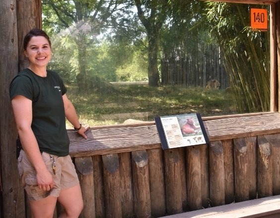 Zoo keeper infront of lion exhibit