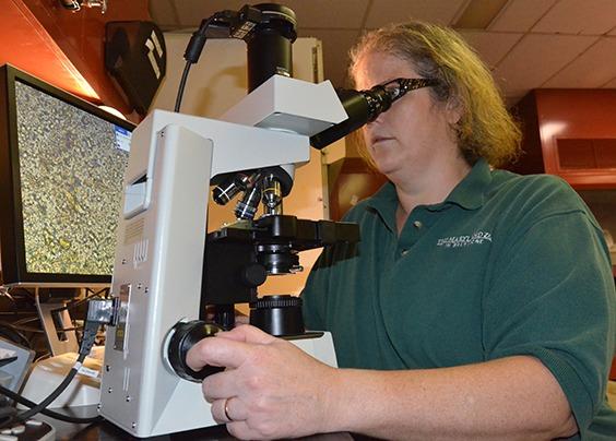 woman looking in microscope