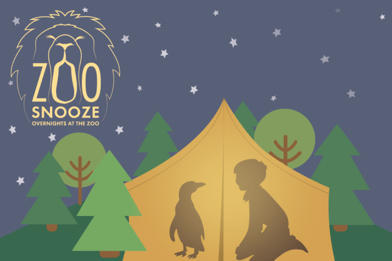 zoo snooze logo