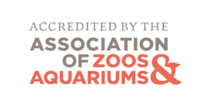 Accredited by the Association of Zoos and Aquariums.