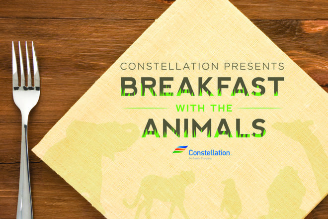 breakfast with the animals logo