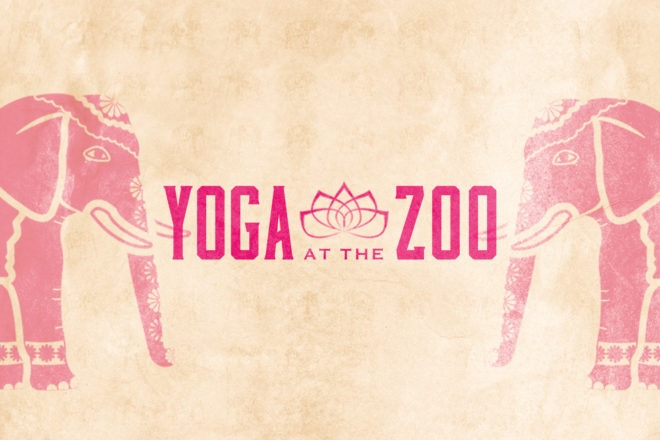 Yoga At The Zoo image