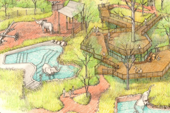 rendering of proposed elephant habitat construction project