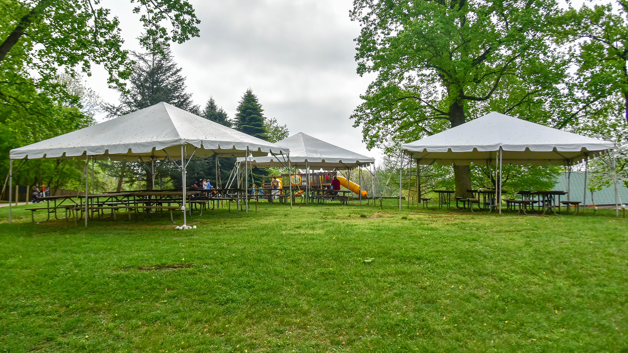 tents and picnic tables in the grass