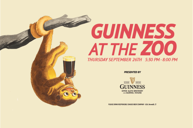 guinness at the zoo promotional banner