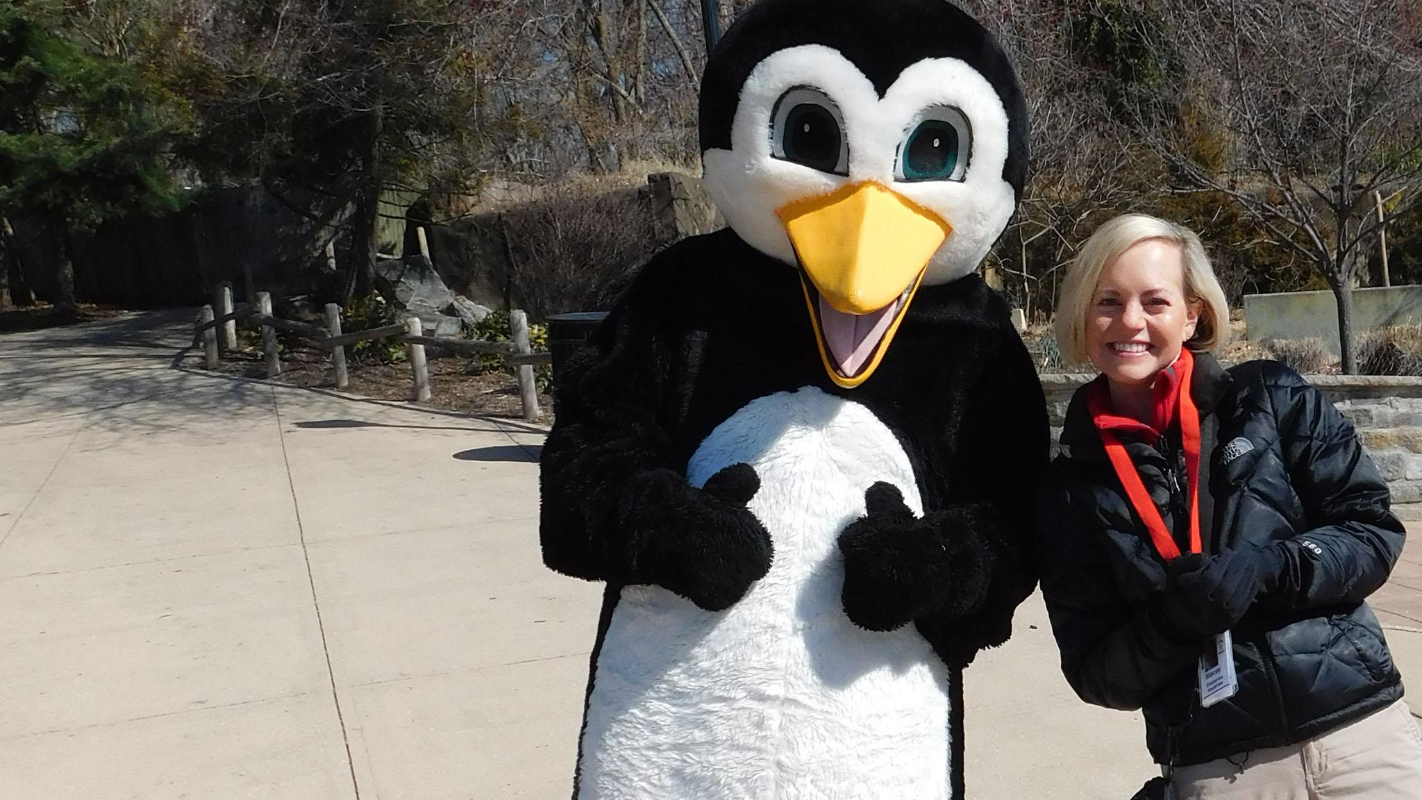 Zoo penguin mascot with volunteer