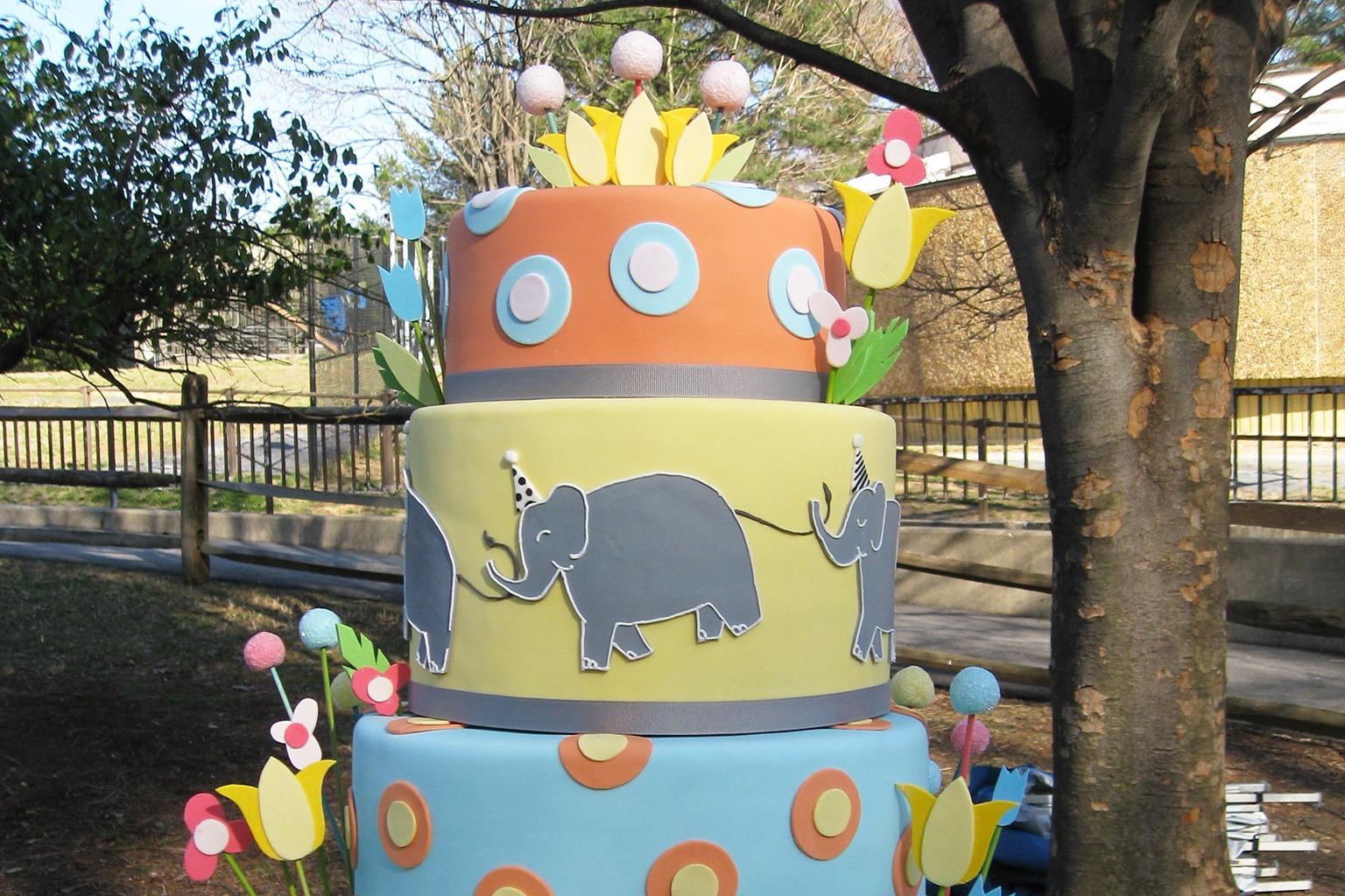 Outdoor Zoo Run Birthday Parties