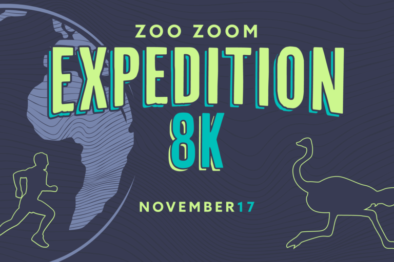 zoo zoom expedition 8k logo