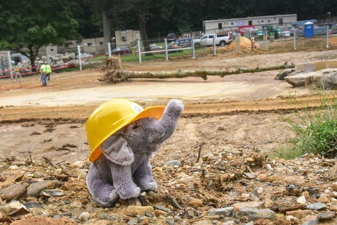 plush elephant near construction