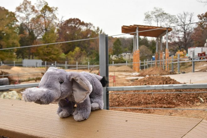 plush elephant outside african journey construction