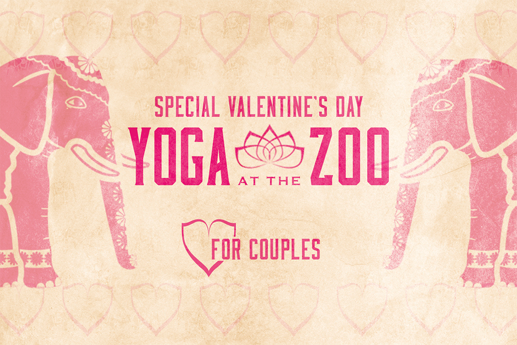 Valentine's Day Yoga at the Zoo for Couples