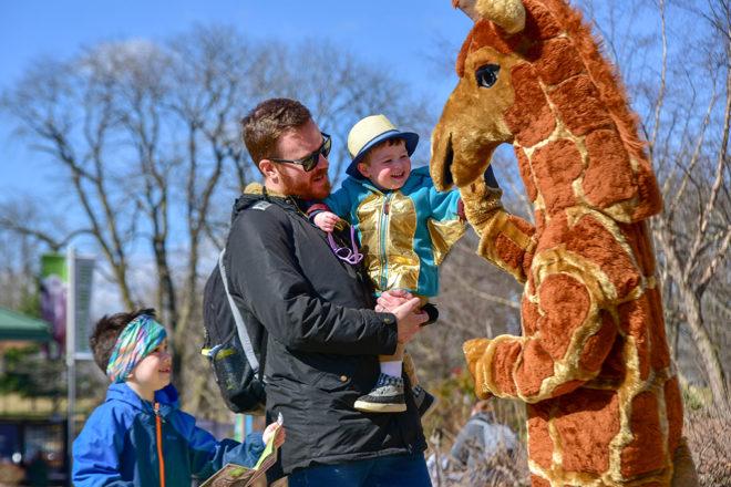 father holding child high-fiving giraffe zoo mascot.