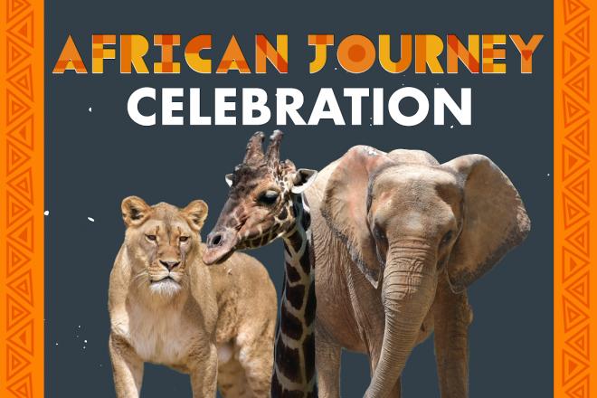 African Journey Celebration