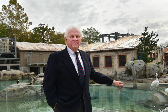 Don Hutchinson in front of penguin exhibit