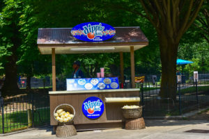 Dippin Dots ice cream stand