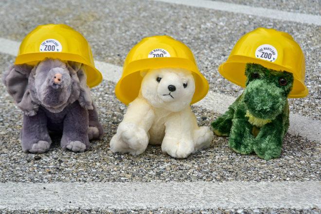 stuffed animals wearing hard hats