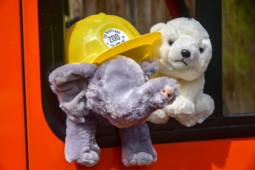 stuffed animals in truck wearing a hard hat