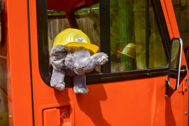 stuffed elephant in truck wearing a hard hat