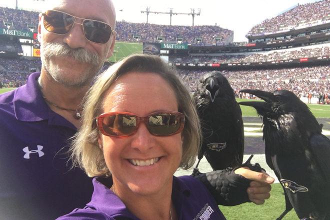 Raven birds at Baltimore Raven's football game