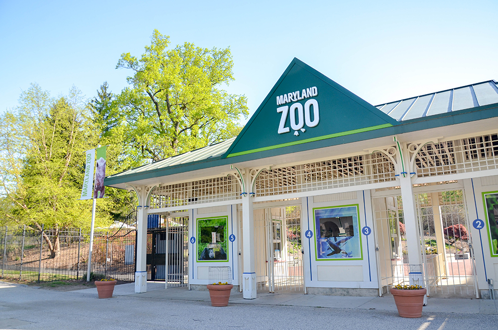maryland zoo front gate