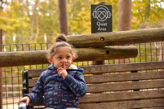 Child in front of quiet zone sign