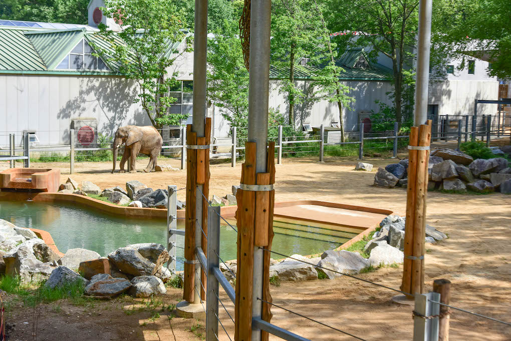Elephant Barn