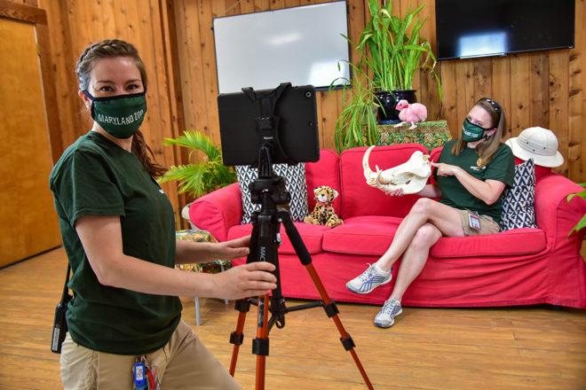zoo educators running virtual program