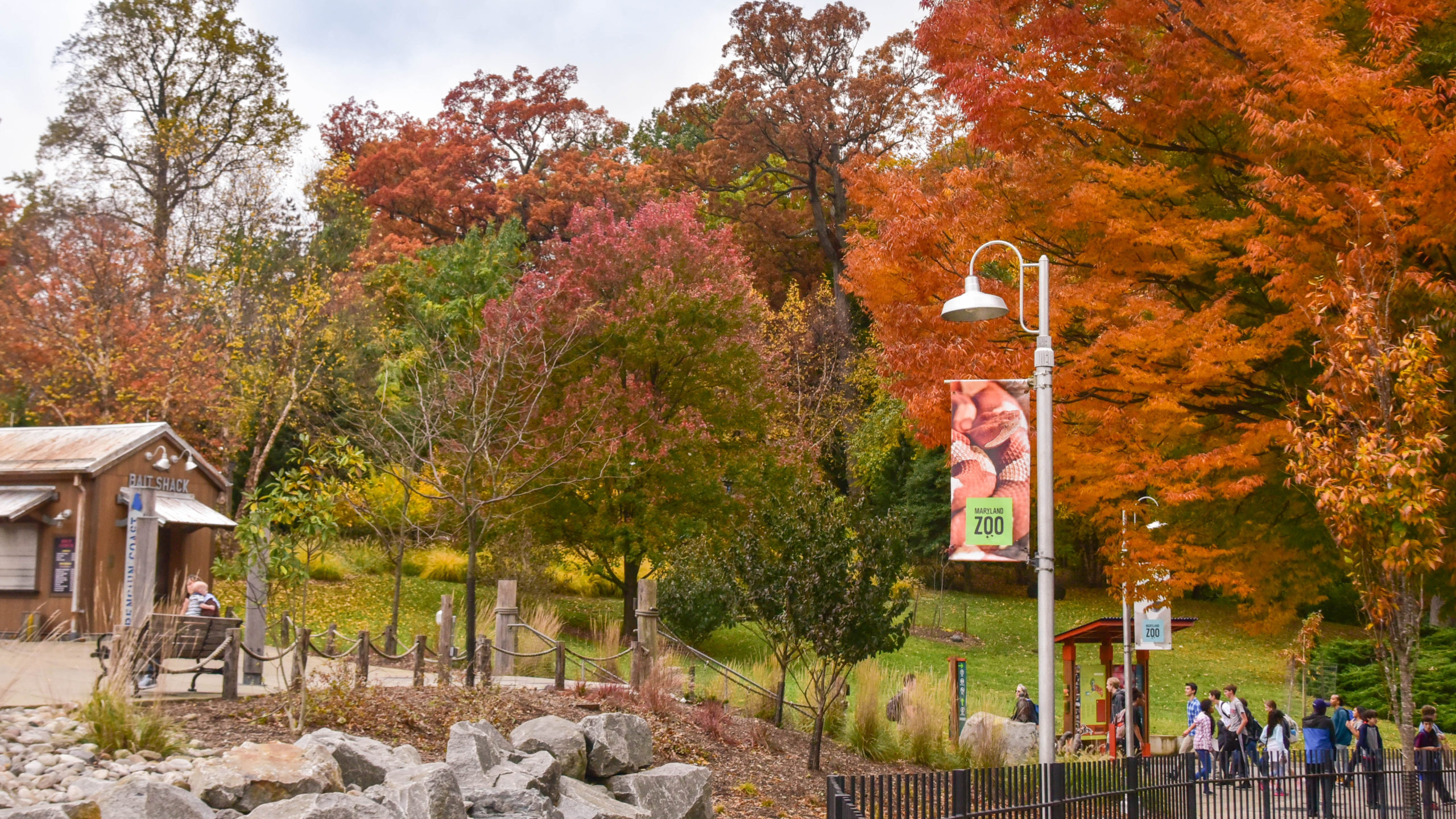 zoo central in fall