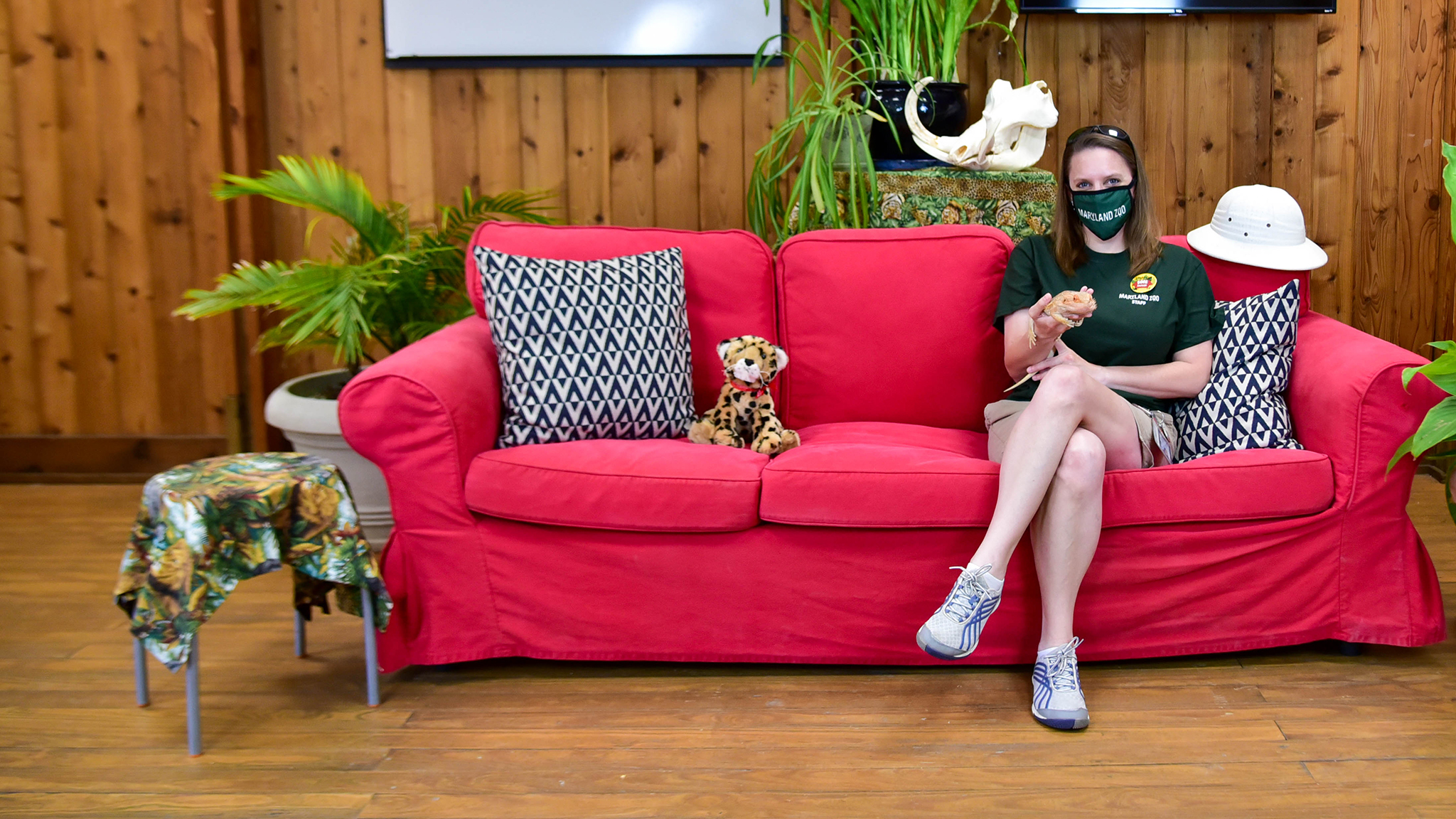 zoo educator with bearded dragon on couch