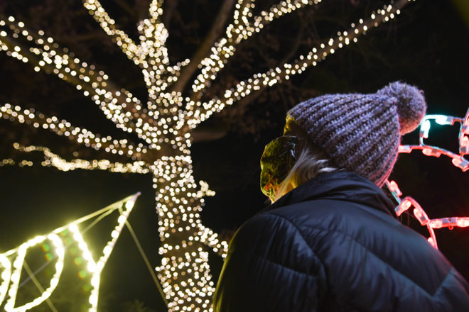 Woman looking up at tree wrapped in lights