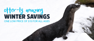 dc zoo hours and prices