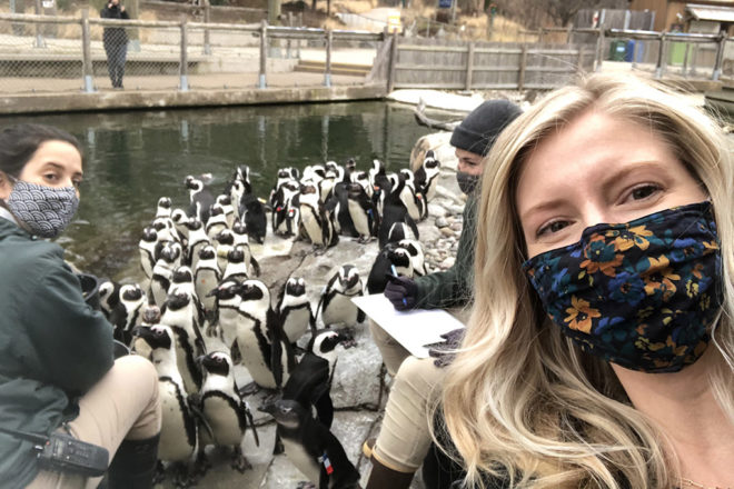woman taking a selfie in front of an african penguin feeding