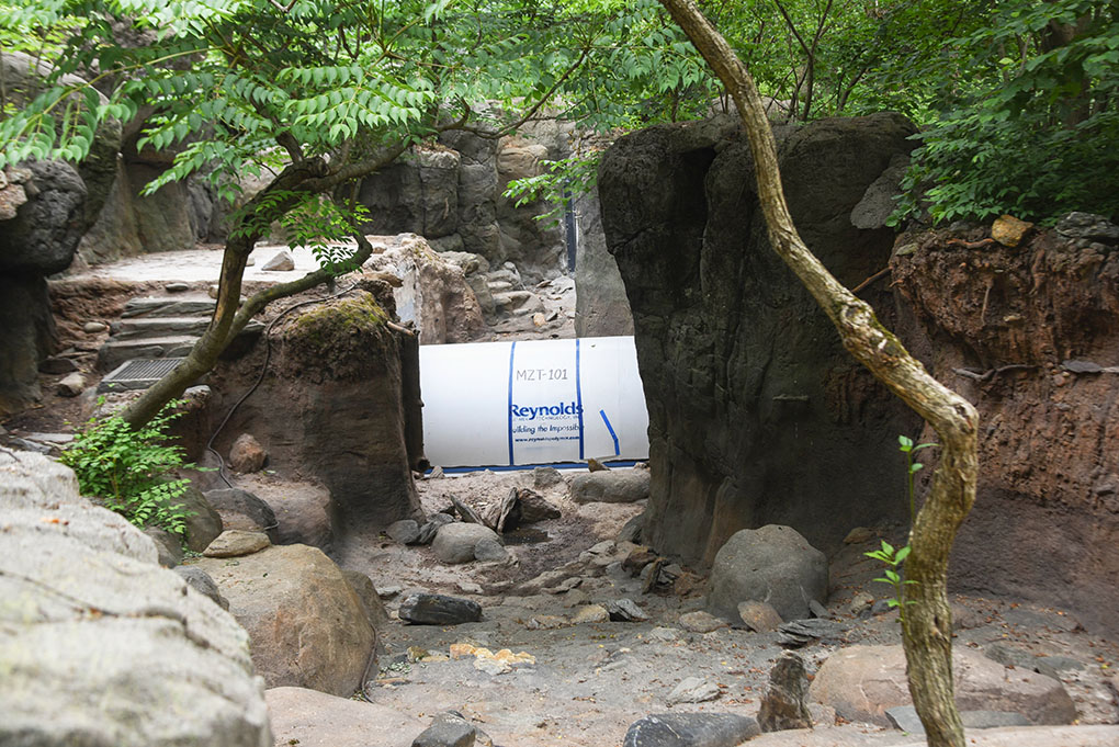 drained otter habitat with new tunnel installed.