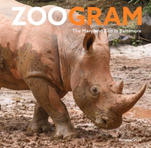 Zoogram magazine summer 2021.