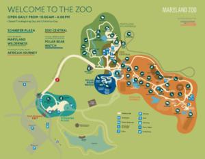 summer zoo map.