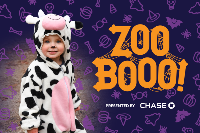 Zoo Boo presented by Chase